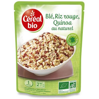 Frumento, riso rosso e quinoa al naturale BIO