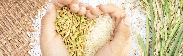 Benessere e Nutrizione